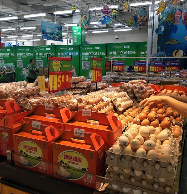 大连绿色鲜鸡蛋