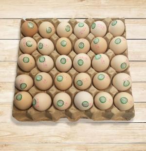 洪家草鸡蛋