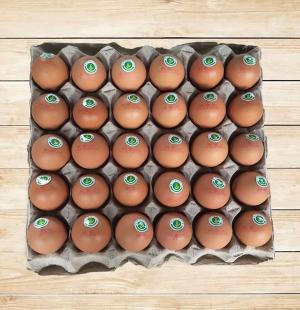 无公害鸡蛋批发