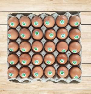 洪家无公害鸡蛋