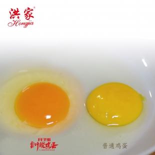 """40枚富叶酸""""月子""""鸡蛋"""